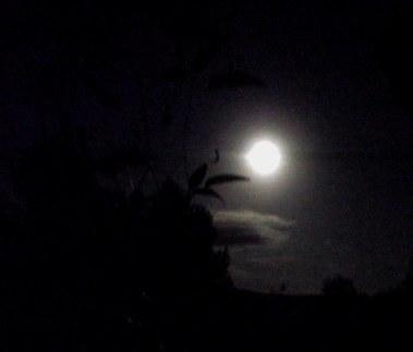 Super moon, 1 DSCF9376