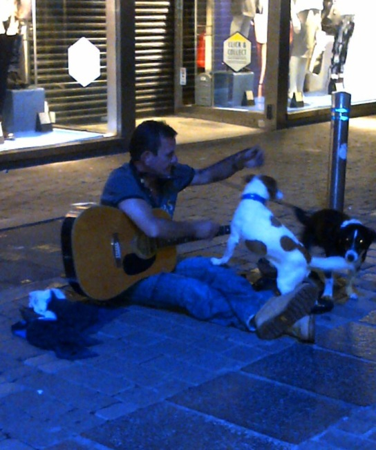 Homeless man and dogs  2 IMG-20140912-00118